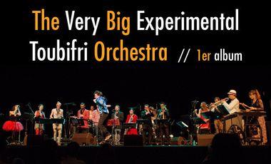 Visueel van project The Very Big Experimental Toubifri Orchestra / 1er album !