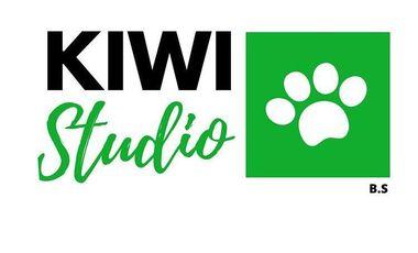 Visuel du projet Développement Kiwi Studio