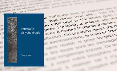 Project visual Petit traité de lycothérapie