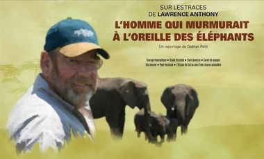 "Project visual Sur les traces de Lawrence Anthony: ""The Elephant Whisperer"""