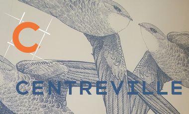 Project visual Pérennisation de la boutique CENTREVILLE face au Covid19