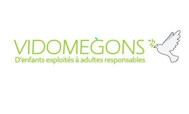 Visueel van project VIDOMEGONS