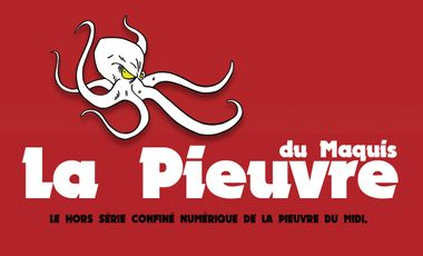 Project visual La Pieuvre du Midi a besoin de votre soutien !