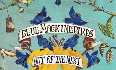Project visual Blue Mockingbirds first album: Out of the Nest
