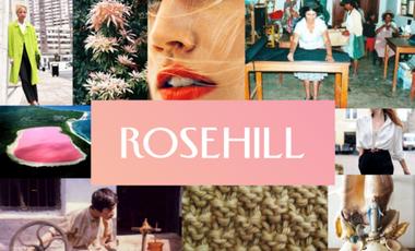Visuel du projet The Rose Hill Project