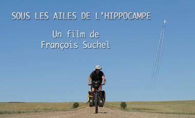 Project visual SOUS LES AILES DE L'HIPPOCAMPE
