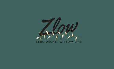 Visueel van project Zlow