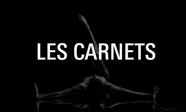 Visueel van project Les Carnets