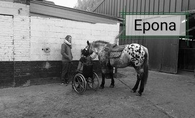 Visueel van project Epona et vous. Soutien pour les chevaux d'hippotherapie