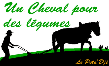 Visueel van project Un cheval pour des légumes