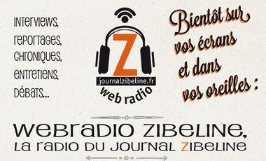 Project visual Webradio Zibeline