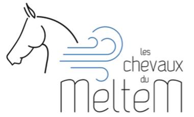 Visuel du projet LES CHEVAUX DU MELTEM