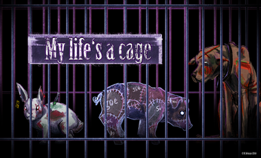 Project visual My Life's a Cage : film engagé pour les animaux