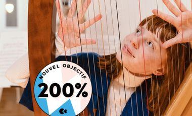 Visuel du projet Une harpe à pédales pour mes études