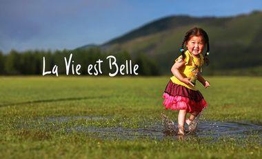 Visueel van project La Vie est Belle, le livre