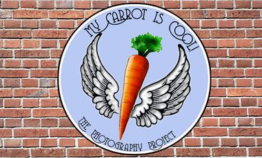 Project visual My Carrot is Cool!