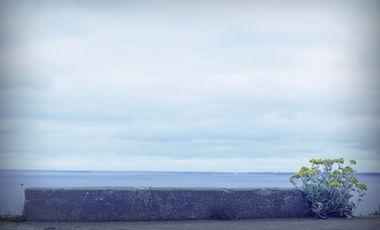 Visuel du projet Le Silence de Soi / Photographies Fabrice Friaisse / texte Pierre van Tieghem