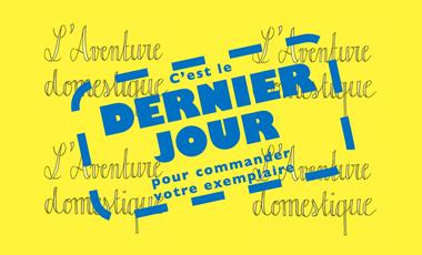 Visuel du projet L'Aventure domestique - journal de confinement de Paul de Vulpillieres