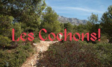 Visueel van project Trois Vieilles Histoires — Les Cochons