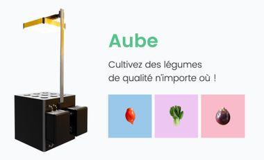 Visueel van project Avec Aube, cultivez des légumes anciens & exotiques n'importe où !