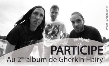 Visueel van project 2eme Album de Gherkin Hairy