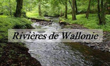 Visueel van project Rivières de Wallonie