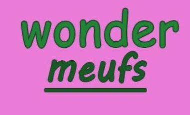 Project visual Aide-moi à réaliser la première édition du magazine Wonder Meufs