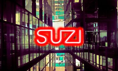 Project visual MAXI SUZI 2000