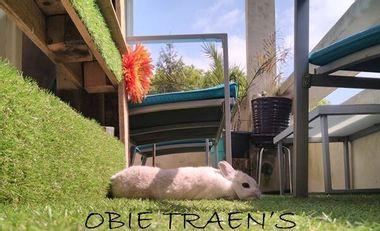Project visual Album - Sur ma planète - Obie Traen's
