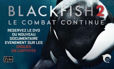 Project visual Blackfish 2 : le combat continue