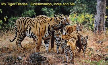 Project visual My Tiger Diaries:  Help Me Create My First Documentary on Tiger Conservation in India