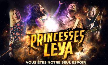 Visueel van project Princesses Leya : Premier album !