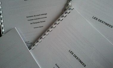 Visueel van project Court métrage comédie musicale Les Destinées