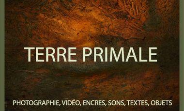 Project visual Exposition/Installation Photographie TERRE PRIMALE