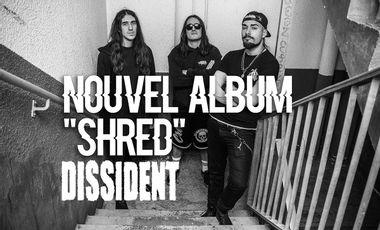 Visuel du projet SHRED - Nouvel album de DISSIDENT