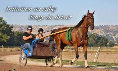 Visueel van project Initiation au sulky, stage de driver
