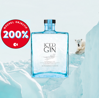 Visueel van project Iced Gin, Noordpoolgin om ijskoud van te genieten !