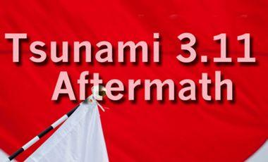 Project visual Tsunami 311 Aftermath