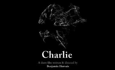 Project visual Charlie