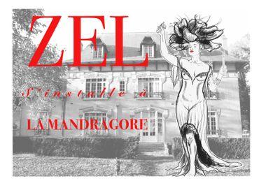 Visueel van project Art & Tattoo - Zel s'installe à la Mandragore !