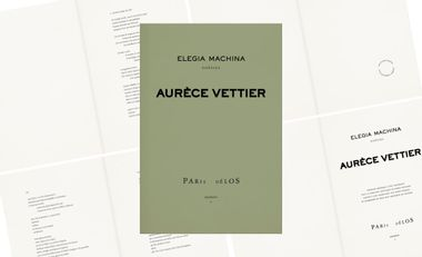Visueel van project Elegia Machina : poésie et algorithmes