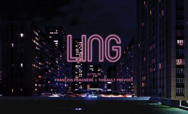 Visueel van project LING