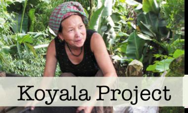 Visuel du projet KOYALA: an android app for rural India