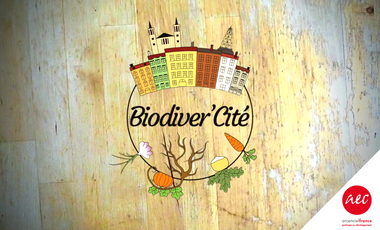 Project visual Biodiver'Cité