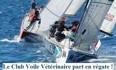 Visuel du projet Le Club Voile Vétérinaire part en régate !