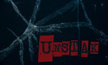 Visueel van project UNSTAK - Premier album