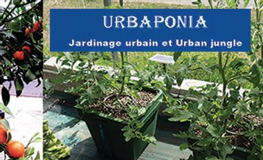 Project visual URBAPONIA