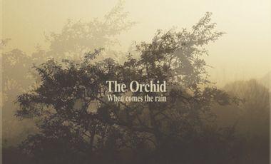 """Visueel van project THE ORCHID : premier EP intitulé """"When comes the rain"""" !"""