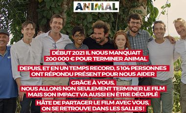 Project visual Animal, le film