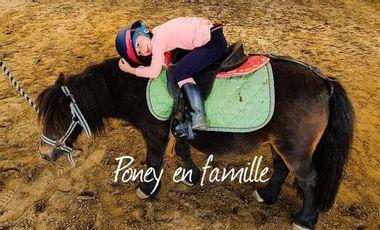 """Project visual La section """"Poney en Famille""""              fait peau neuve...soutenez le projet!"""